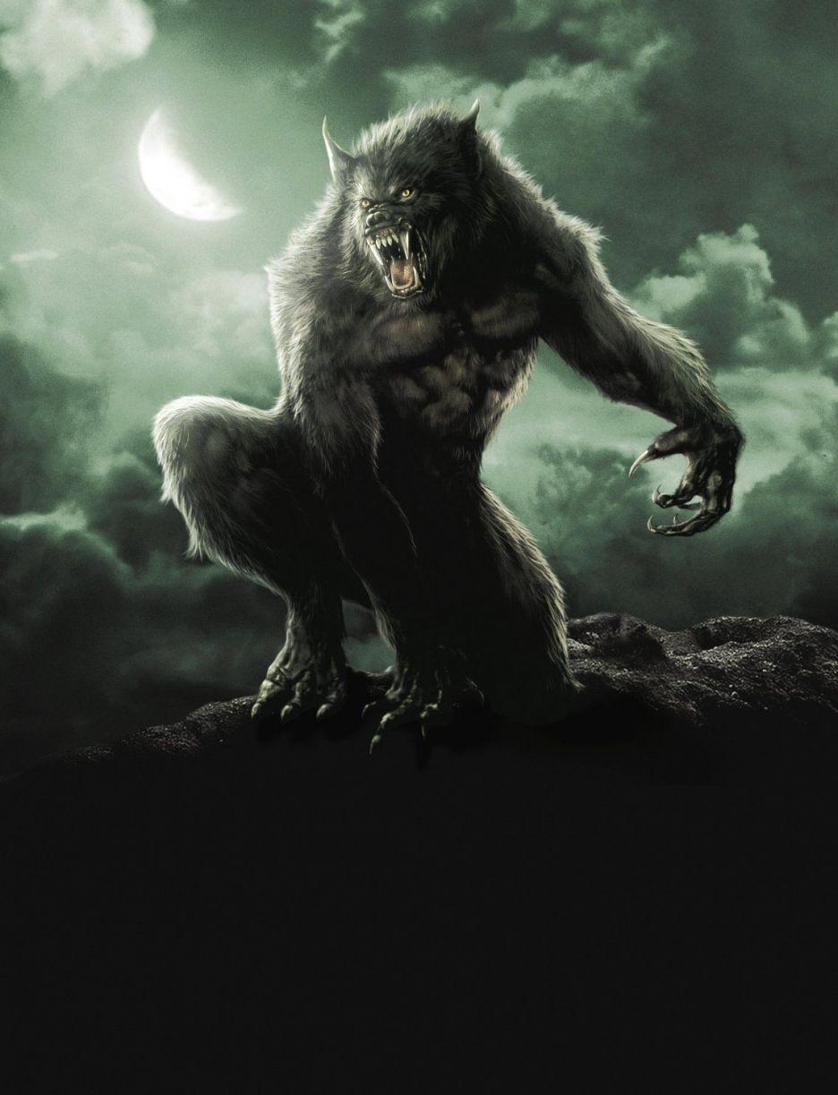 Sue Me! I Like Van Helsing | Hombres lobo, Arte con hombre lobo, Licantropo