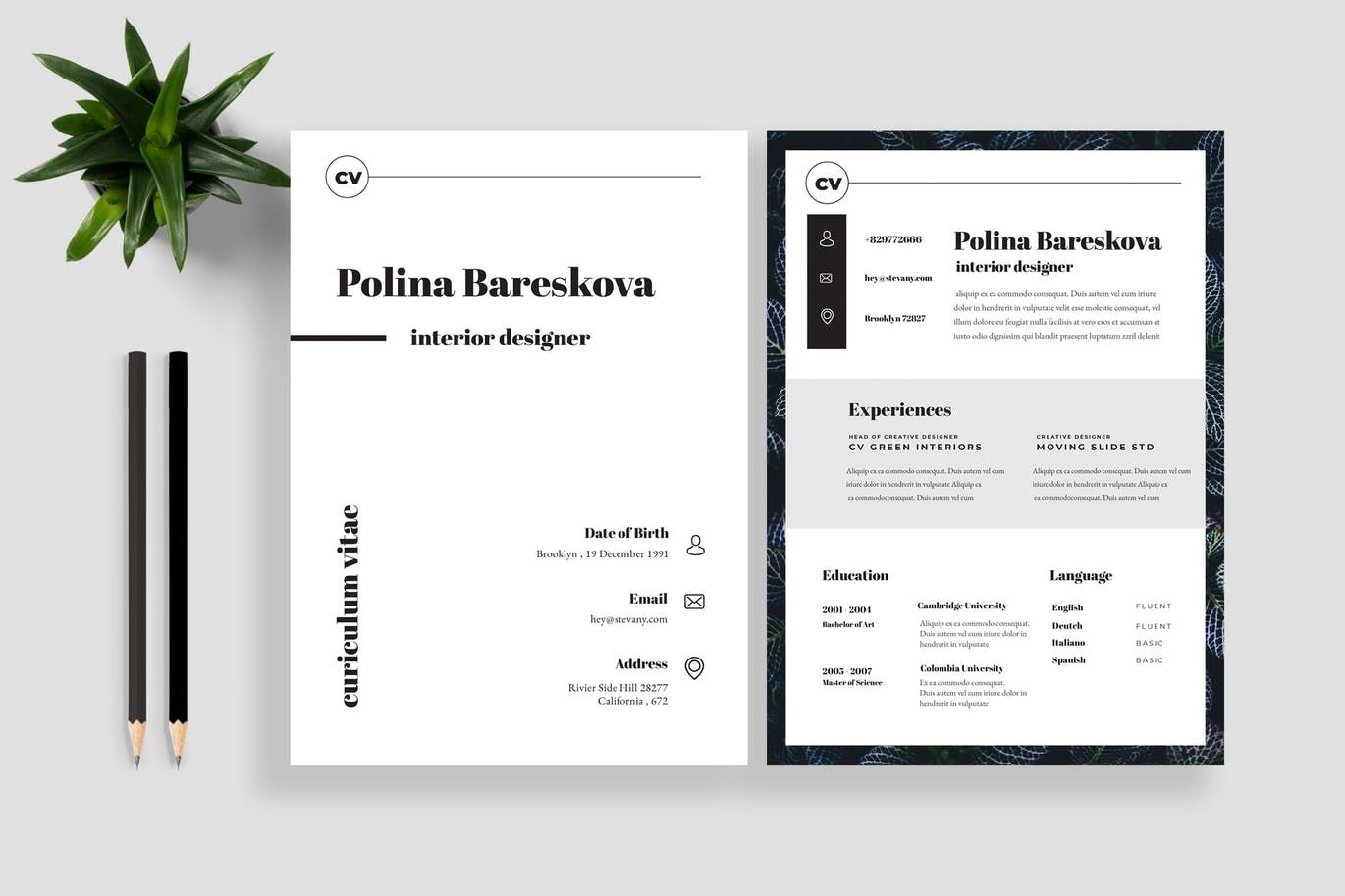 Clean Resume CV 13 by TMint on Envato Elements Resume