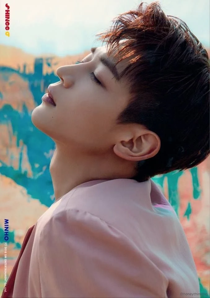 10 Male Idols With The Most Gorgeous Side Profiles Koreaboo Shinee Minho Shinee Side Profile