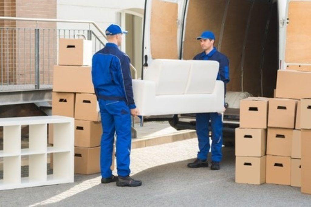 دليل شركات نقل عفش الامارات Daily Pinterest Moving Services