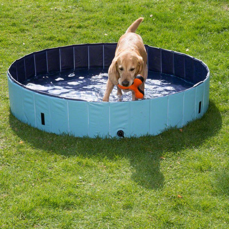 Doggy Paddling Pool Dog Pool Dog Swimming Pools Dog Swimming