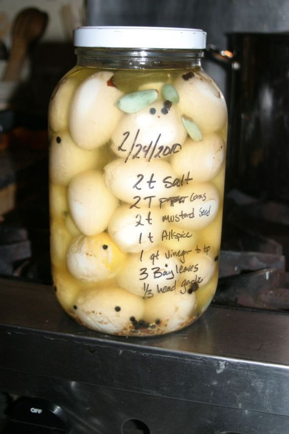 Putting up spring's surplus: Pickled Eggs