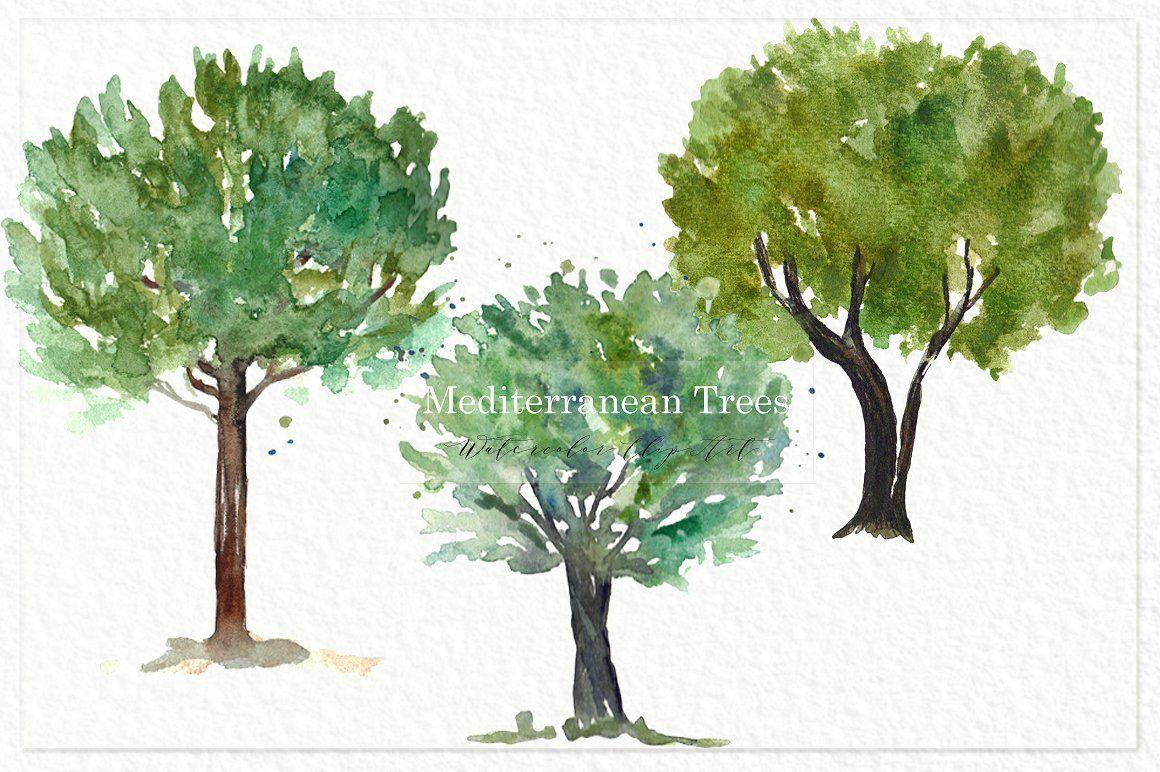 Trees Mediterranean Clip Art Digital Watercolor Tree Art Art