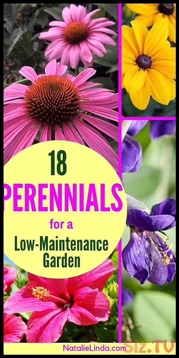Each gardener must attempt to make her or his garden into a location attractive Each gardener must attempt to make her or his garden into a location attractive to birds a...