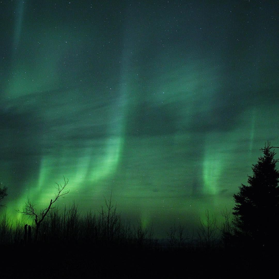 157 отметок «Нравится», 6 комментариев — Northern Escape Photography (@northern_escape_photography) в Instagram: «A walk in the woods with the glowing night sky 🌙🌲 #auroraborealis #northernlights #nightsky…»