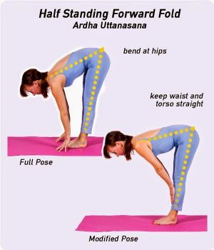 how do you cue ardha uttanasana standing forward bend