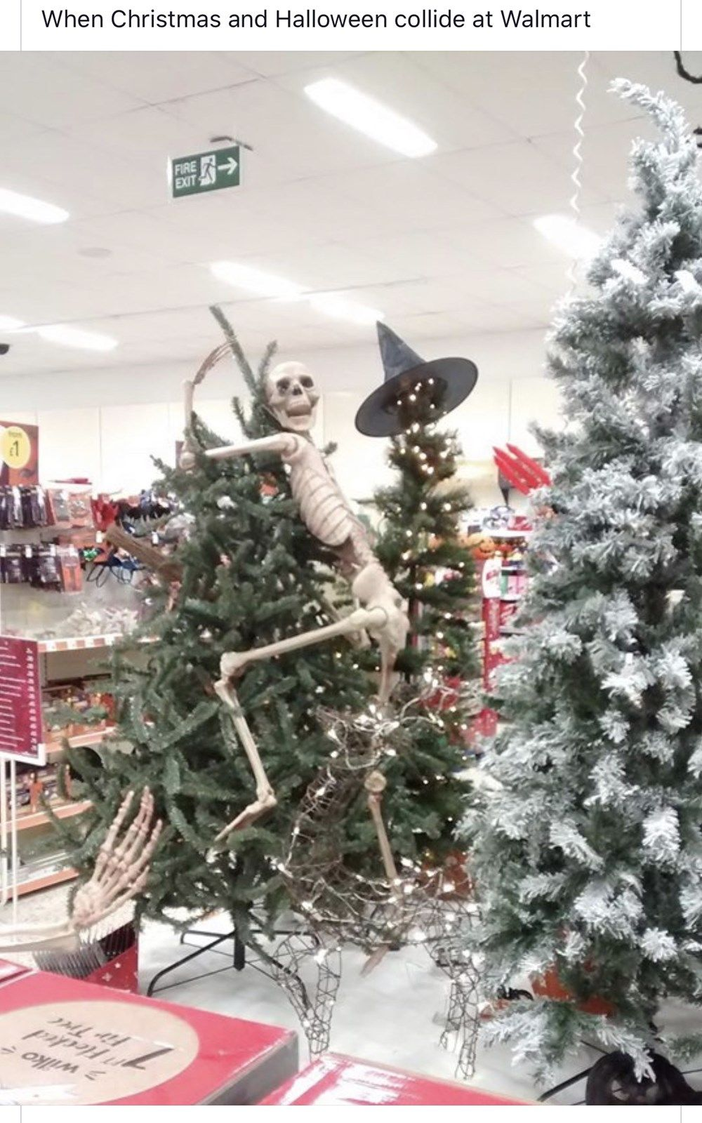 Comedy Filled Posts That Pack A Punch Christmas Pranks Christmas Decorations Funny Pictures