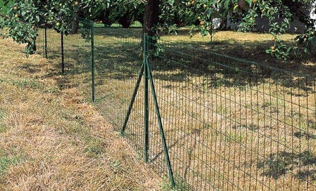 Cloturer Le Jardin Avec Un Grillage Grillage De Cloture Cloture Grillagee Cloture Jardin