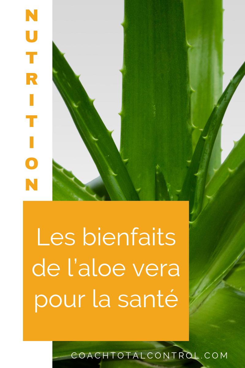 Image Plante Aloe Vera l'aloe vera est une plante reconnue pour ses propriétés