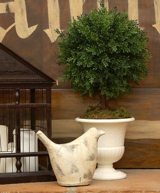 DIY French Country Decor: Boxwood Topiary Tutorial