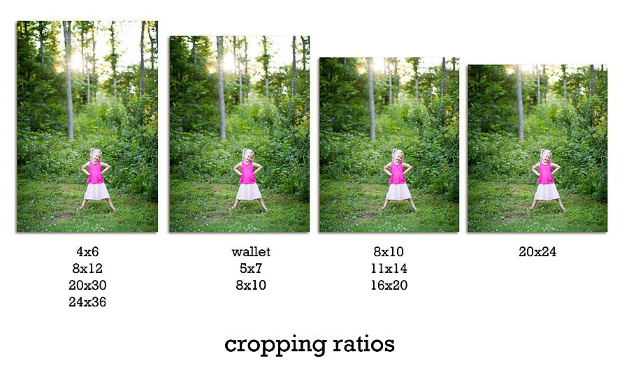 Cropping Ratios Photography lessons, Art lesson plans