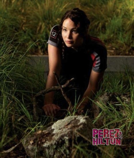 Katniss wiki
