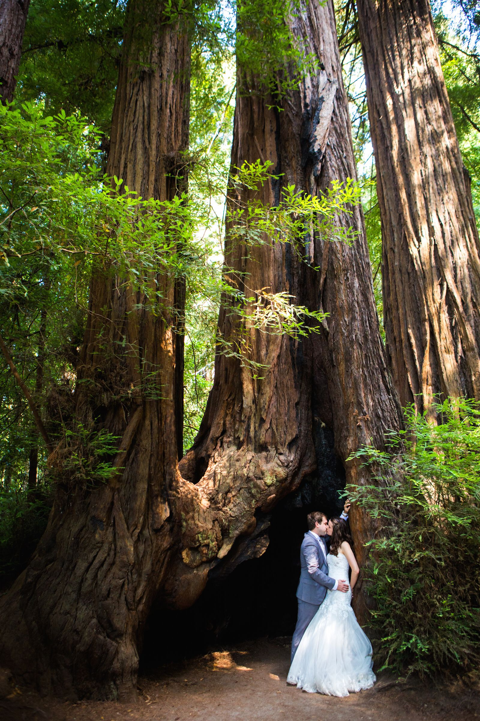 Look at those Redwoods! View the full wedding here: http ...