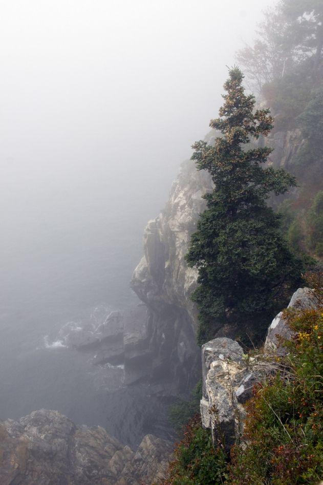 A gorgeous vista, especially with fog