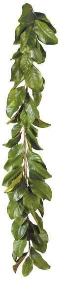 Photo of New Free Magnolia Wreath Display Ideas Southern Life, …