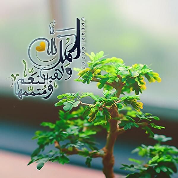 Doua دعاء الحمدلله واهب النعم ومتممها Islamic Images Herbs Positivity