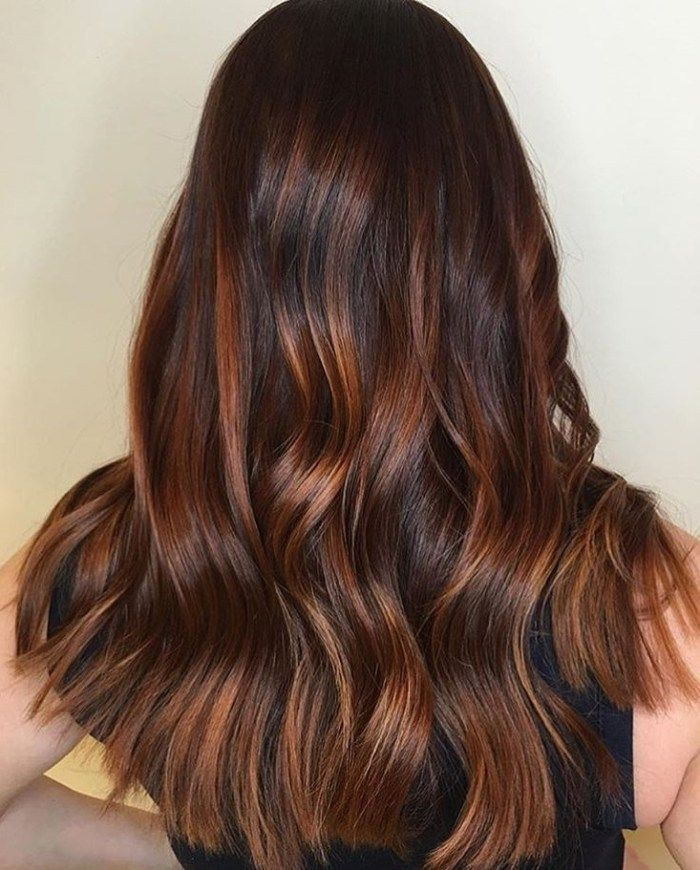 40 Unique Ways To Make Your Chestnut Brown Hair Pop Colorful Hair
