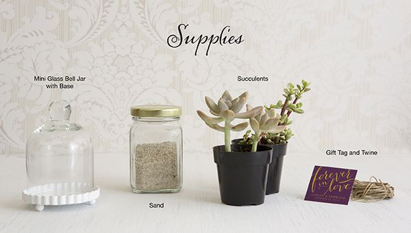 DIY Wedding Favor Inspiration: Succulents