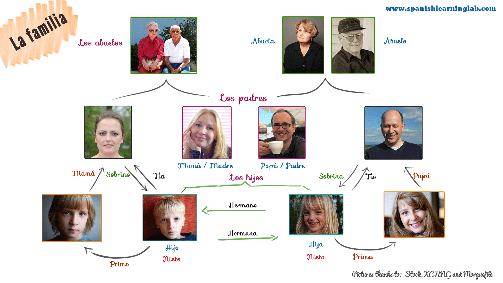 A Simple Family Tree In Spanish For Some Common