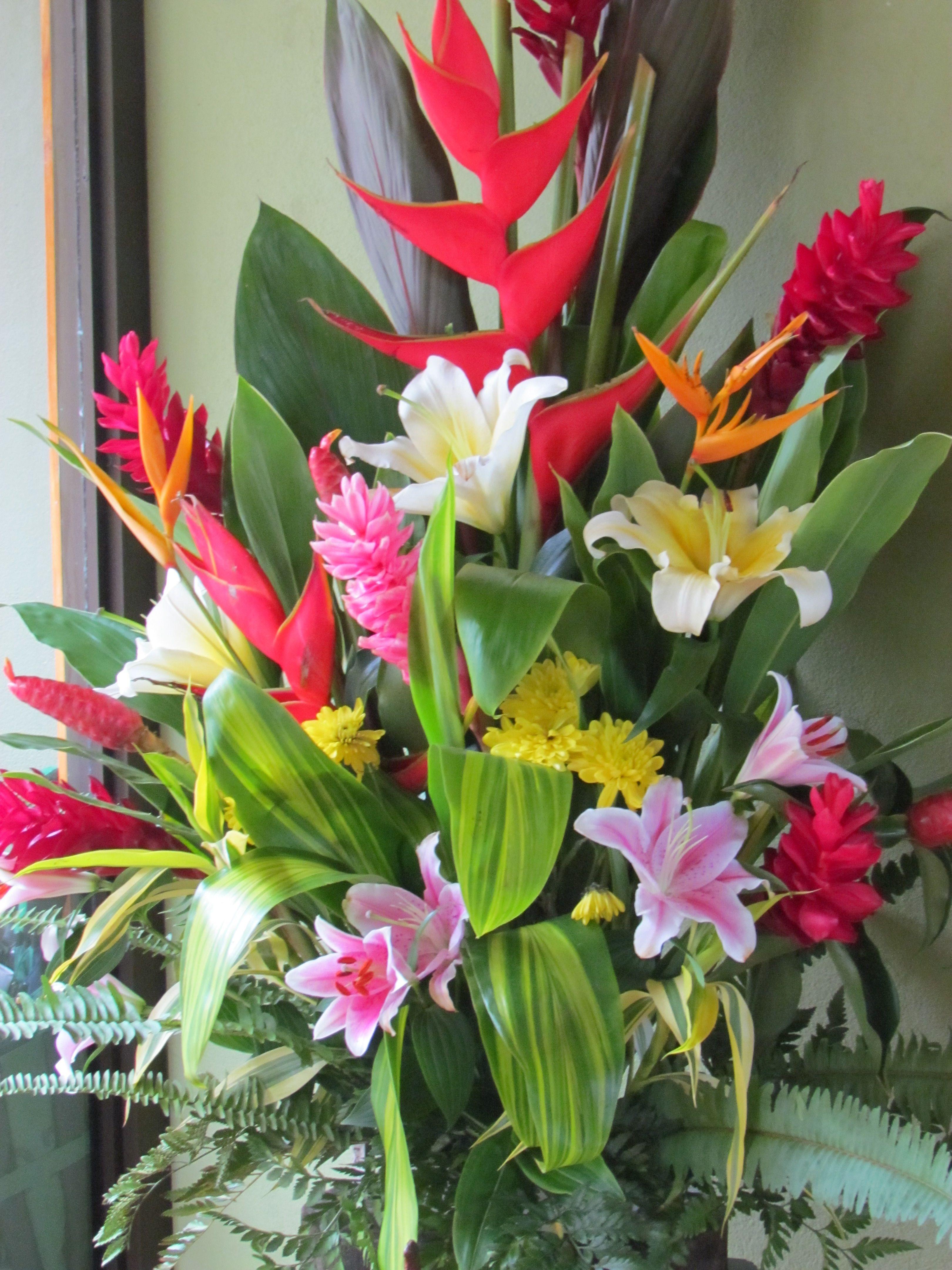 Tropical flowers in monteverde tropical shades pinterest tropical flowers in monteverde izmirmasajfo Gallery