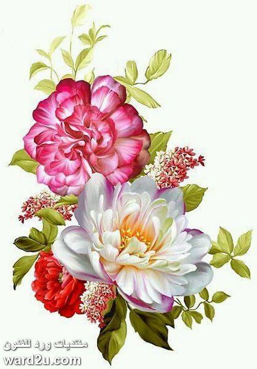 تصميمات ورد منوعة للديكوباج Digital Flowers Flower Art Floral Painting