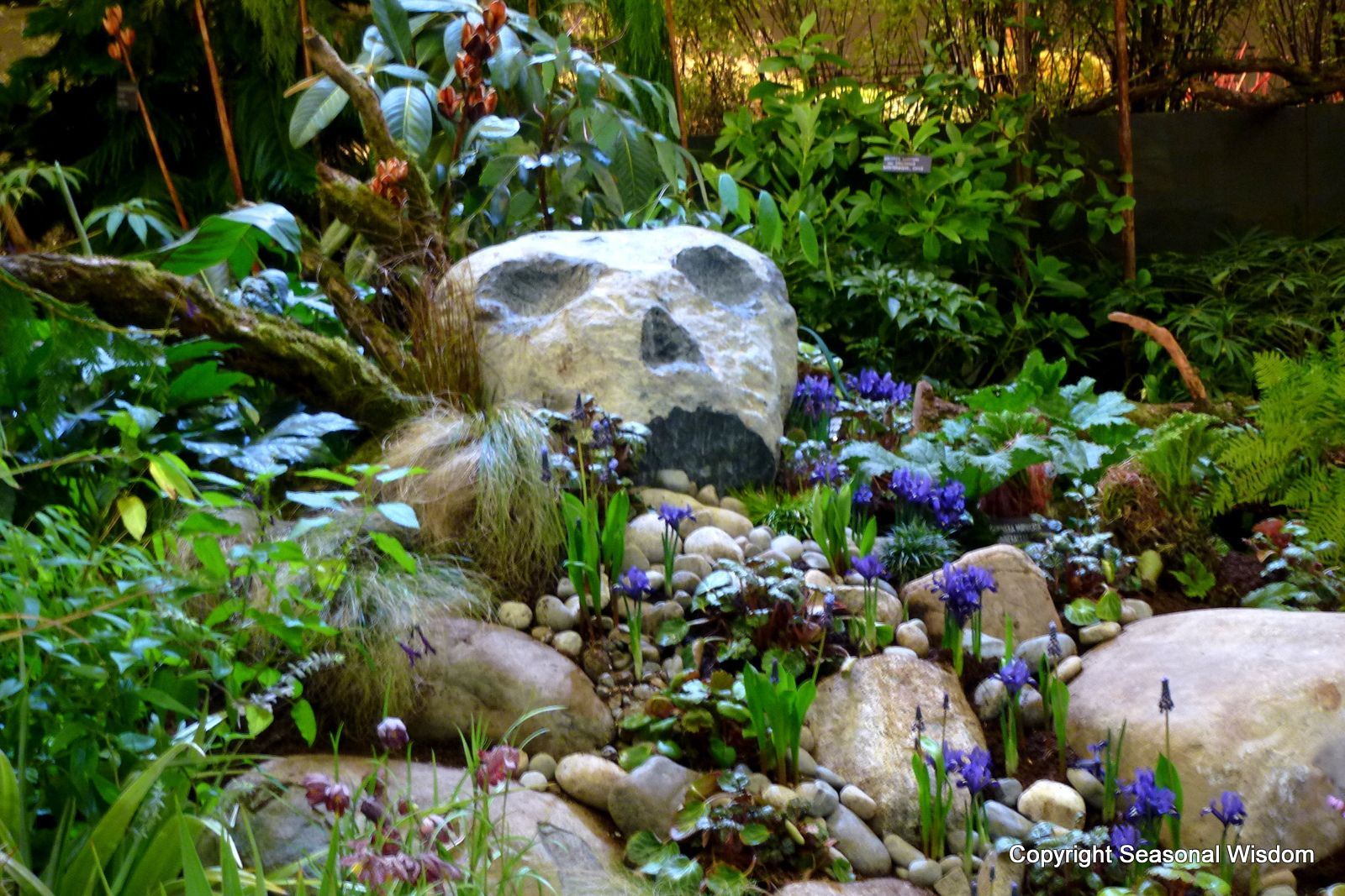 contemporary rock garden how to make a small rock garden soothing – Plants for a Rock Garden