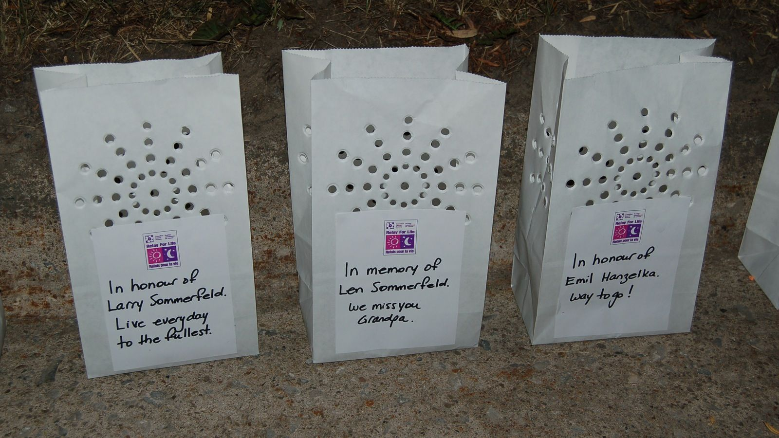 Relay For Life Luminary Bags Google Search Relay For Life Relay Luminaries Bags