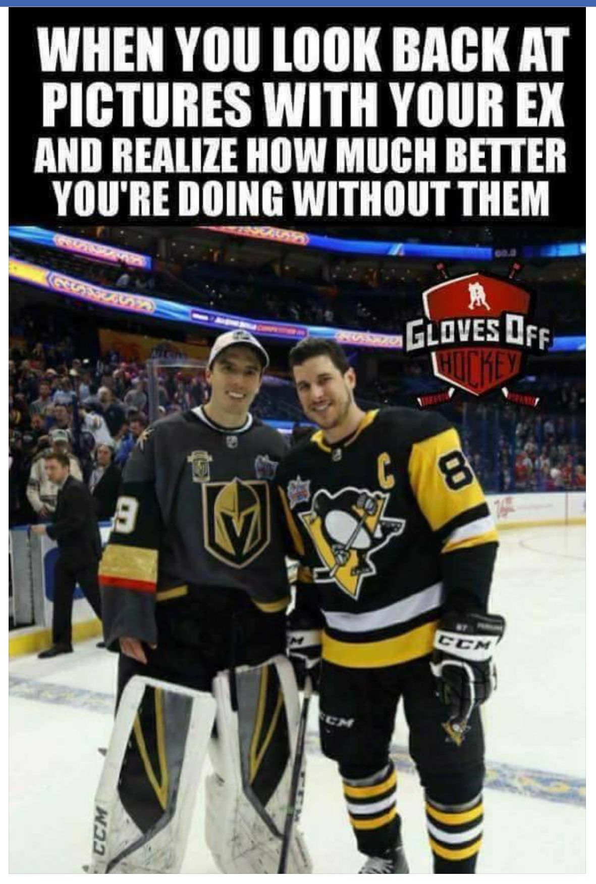 Marc Andre Fluery Isn T Missing His Ex Vgk Vegasgoldenknights Vegasborn Vegasstrong Las Vegas Golden Knigh Hockey Humor Golden Knights Hockey Hockey World