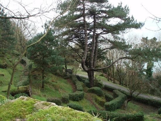 صورة لجبل أرغول