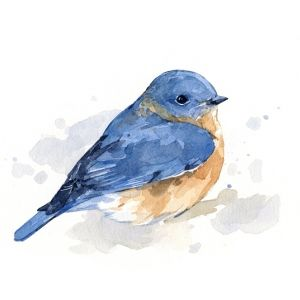 Blue Bird Water Color Painting Print By Howmybrowneyesseeit 7 50