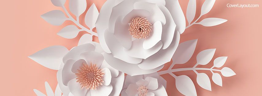 Floral Facebook Covers: Peach Background White Flowers Facebook Cover Coverlayout