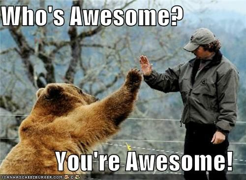 Who's awesome? You're Awesome! | Bear cubs, Bear, Grizzly bear