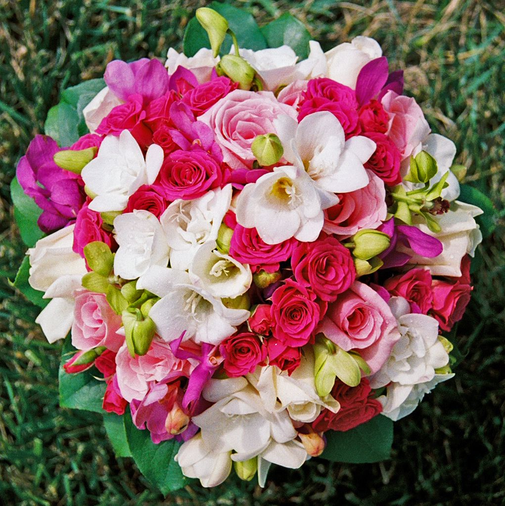 Hot Pink Spray Roses White Freesia Light Pink Roses Pink Freesia