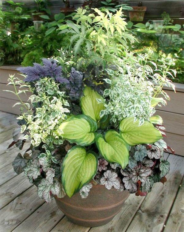 Good Patio Gardening 101