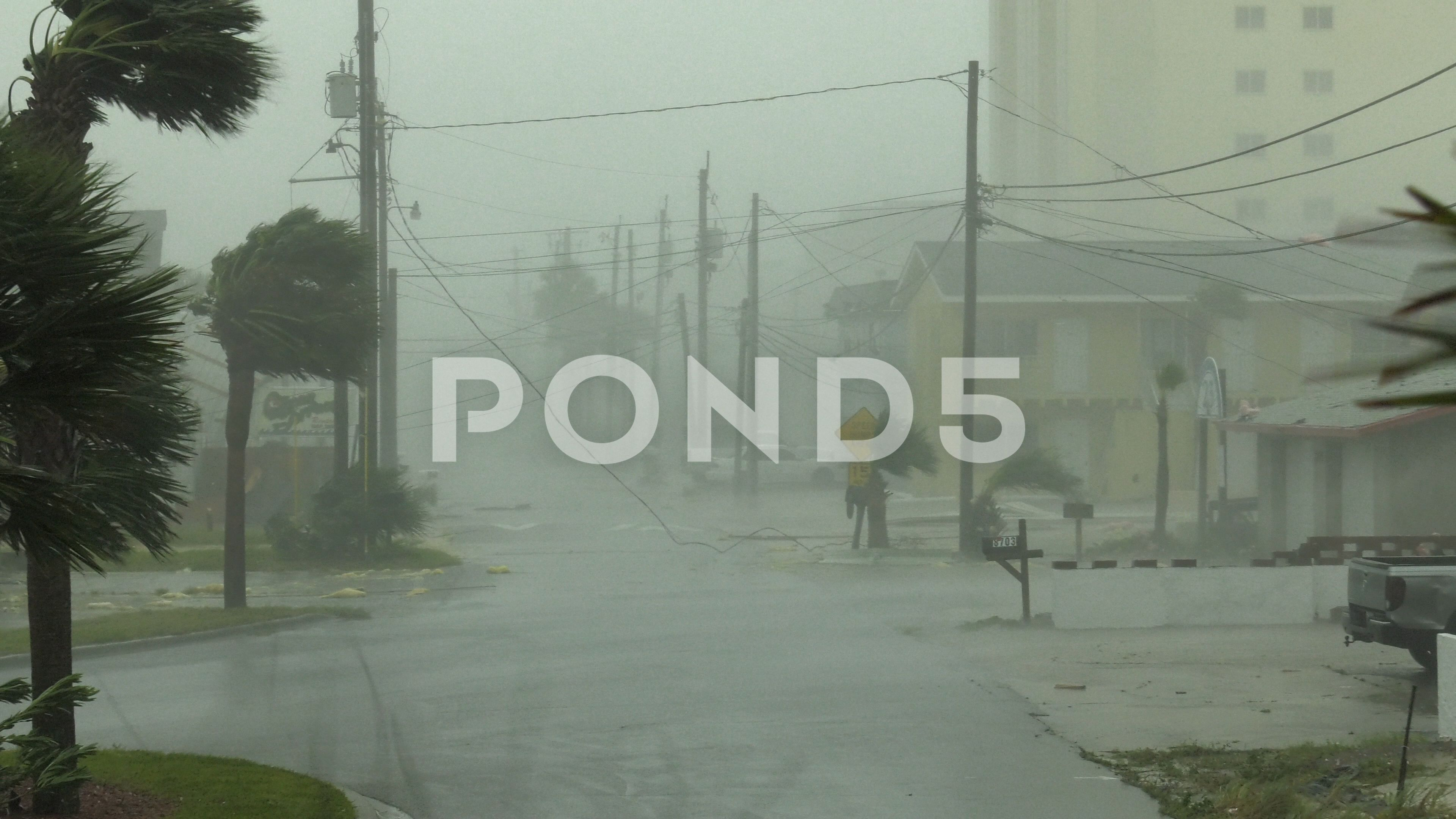 Hurricane Michael Eyewall Winds Stock Footage Ad Eyewall Michael Hurricane Footage Wind Michael Stock Footage