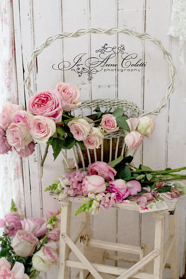 Vintage rose collection blossoms blooms be still my for Shabby vintage gustavien