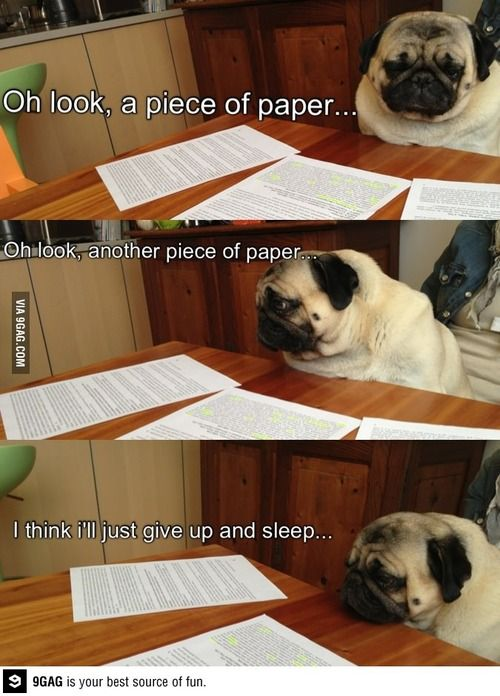 College accounting homework help