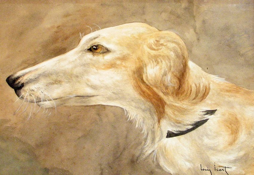 Louis Icart - A Portrait Of A Borzoi | Flickr - Photo Sharing!