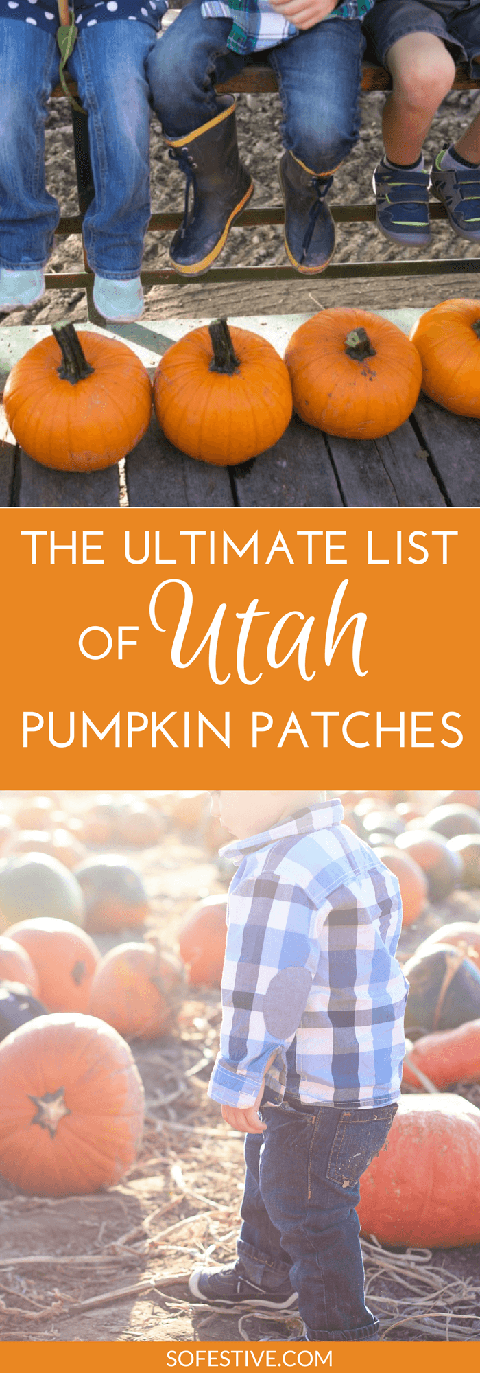 2019 Utah Pumpkin Patches, Corn Mazes, and Fall Fun