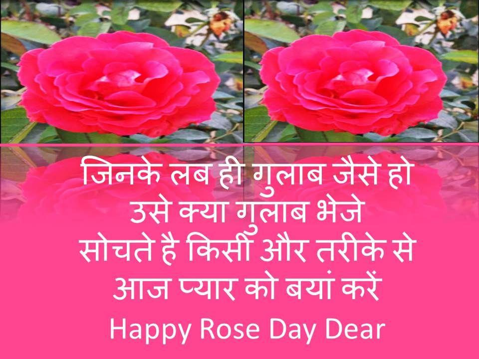 Rose Day Shayari SMS in Hindi in 2020 Rose day shayari