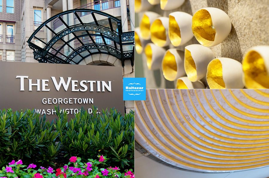 westin georgetown | Westin Georgetown DC Wedding Photographer {Puja+Nick} » DC MD NJ NY ...