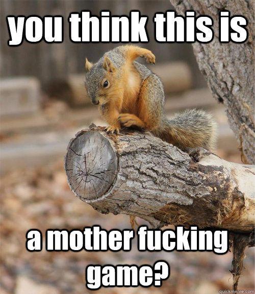a48b06ddbb7808caec5945911b5e8c9f badass squirrel memes quickmeme i am the squirrel pinterest,Funny Squirrel Memes