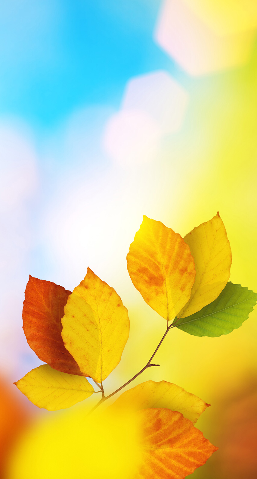 Great Wallpaper Home Screen Yellow - a48b21307fa43858dcad4f7b540a7b1f  Best Photo Reference_80148.png