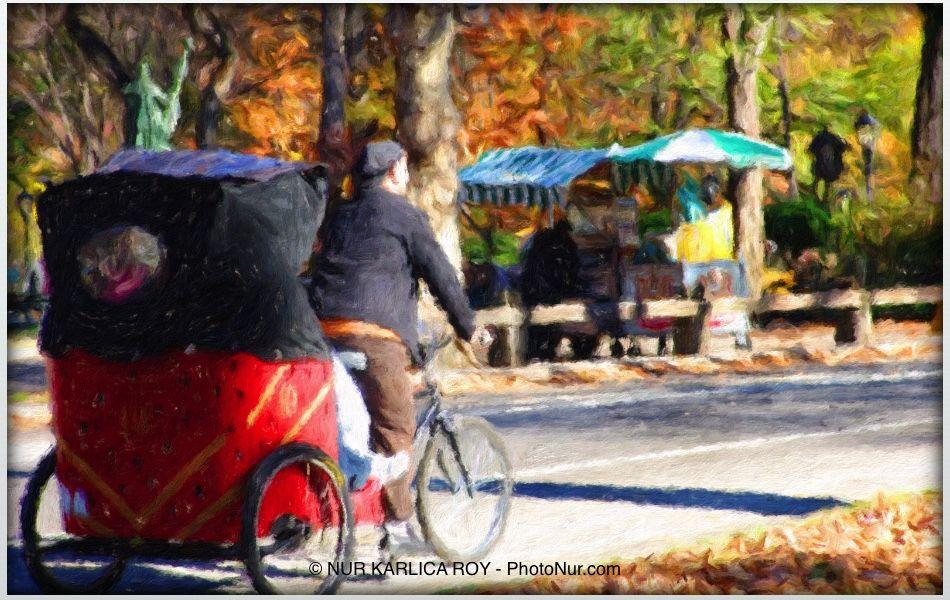 NY central park winter