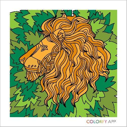 Lionfy
