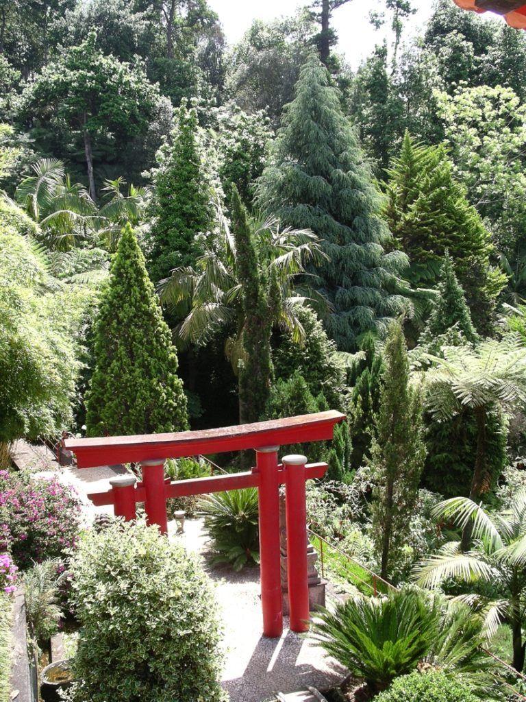 Madeira Tropical Garden Monte Palace Tropische Garten Tropischer Garten Botanischer Garten
