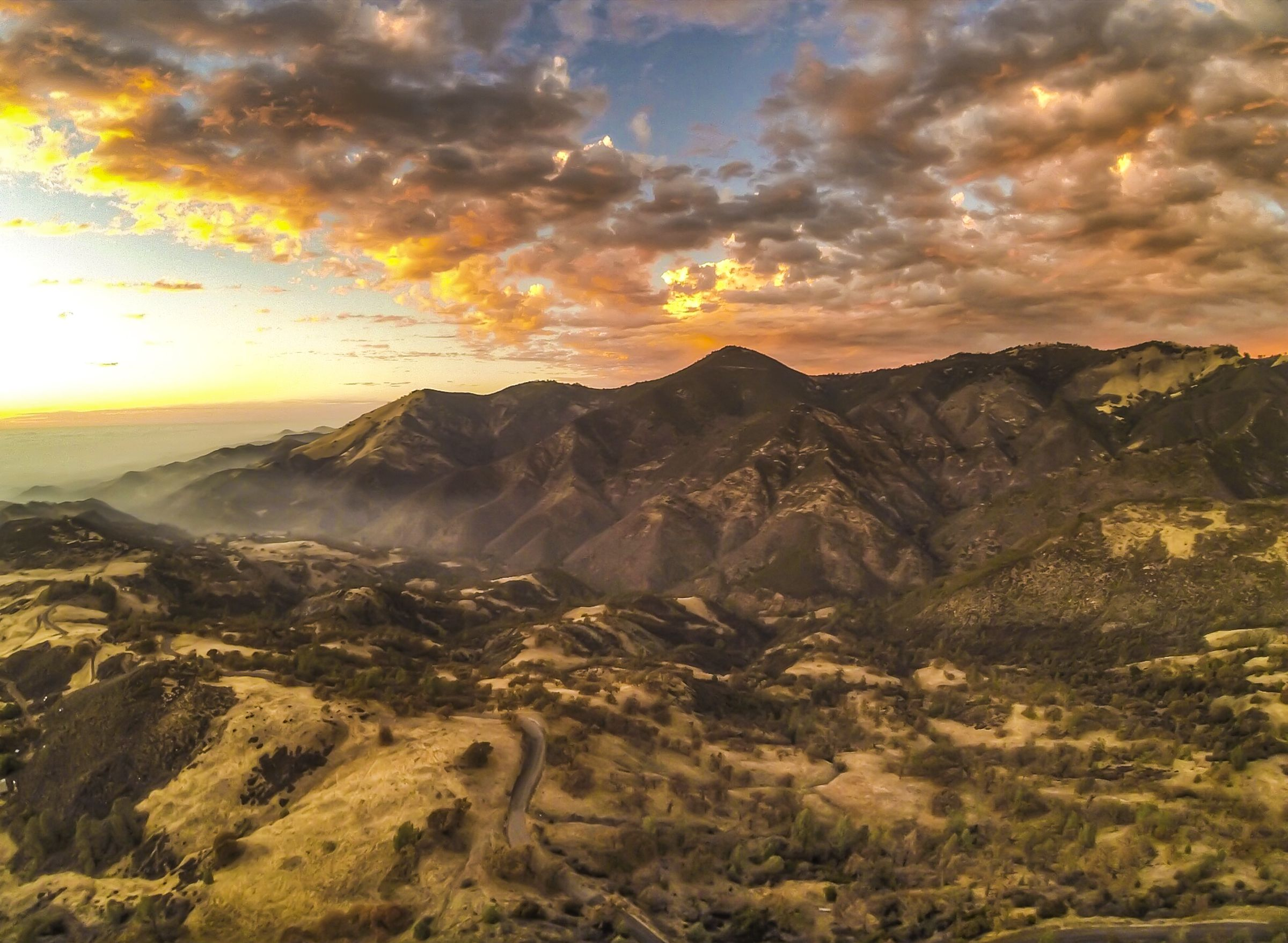 Figueroa Mountain. Santa Ynez, California.