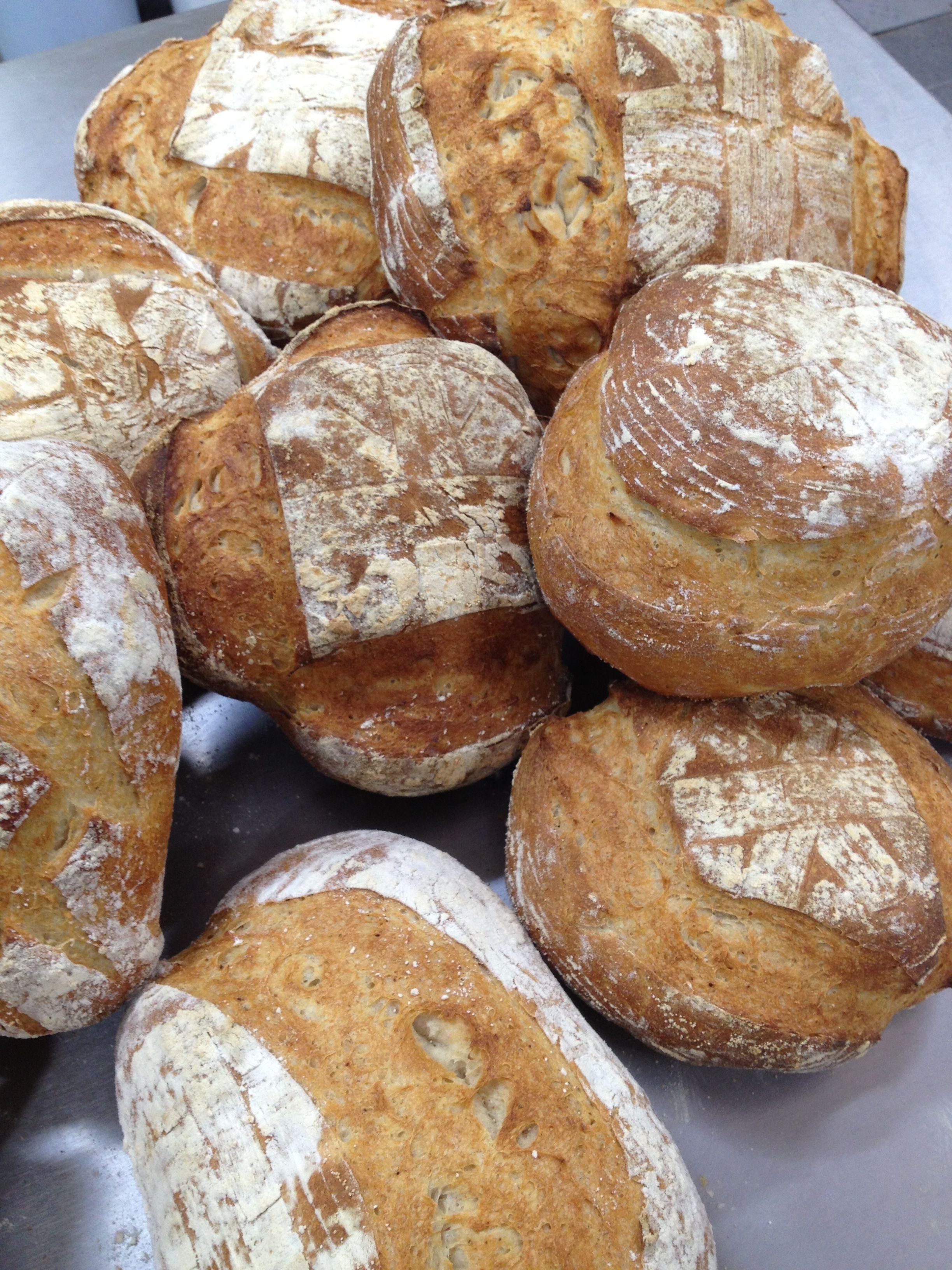 Variedad de pan campesino