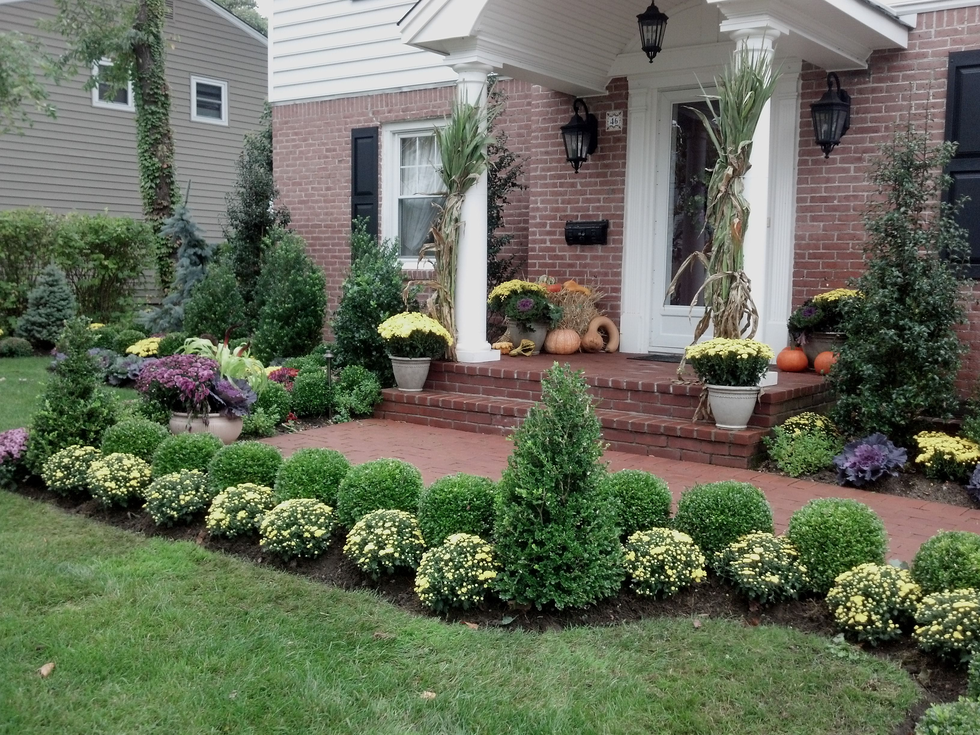 Front Yard Courtyard Landscaping Pin By Gaetano Florist And Gardens Inc On Fall Landscaping