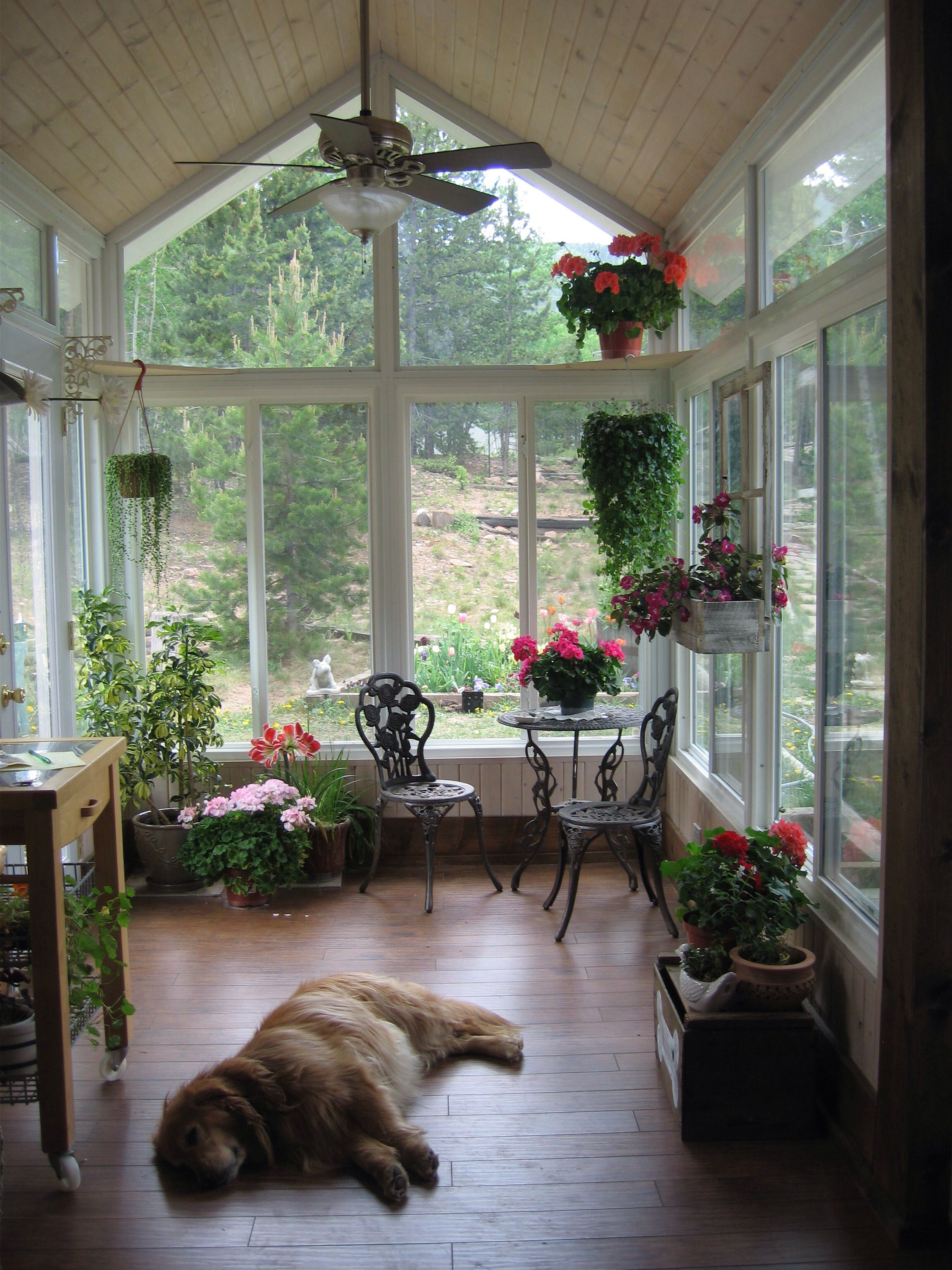 Ha. This is what my sunroom will really look like.  Sunroom